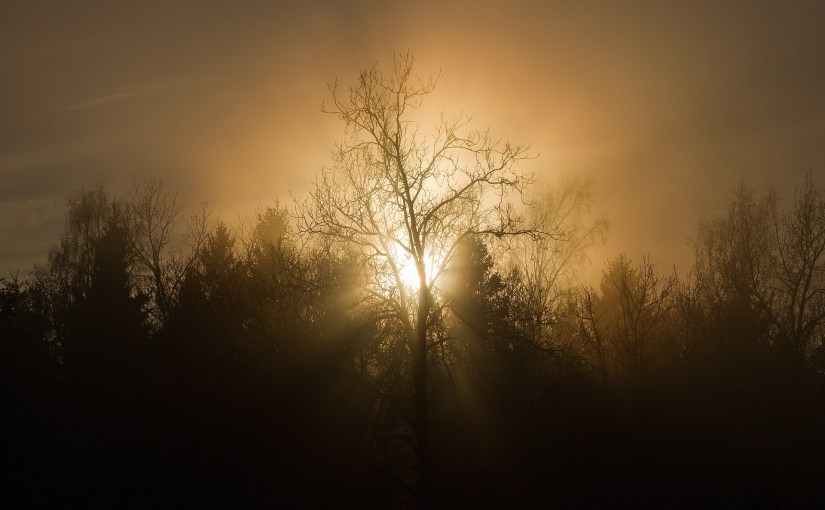 The Sun Shining on a Cool Misty Morning  #poetrythursday