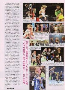 Weekly Pro Wrestling Magazine 6/10/20