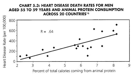 Animal-protein_Heart-disease