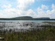 Bruce Penninsula, Wingfield Basin 2
