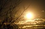 A White Golden Sky