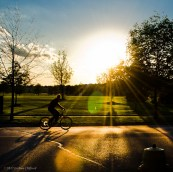 Biking down the street