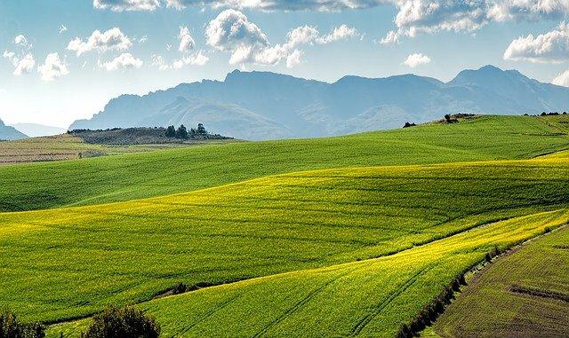 landscape photo of rolling grassy green fields