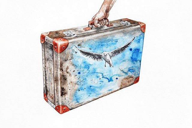 drawing of a travel suitcase with a seagull on it