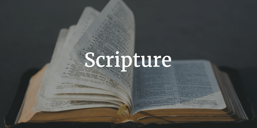 Scripture: What The Bible Is And Why It Matters