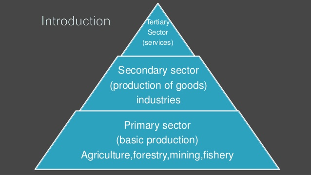 sectors-of-the-indian-economy-1-3-638