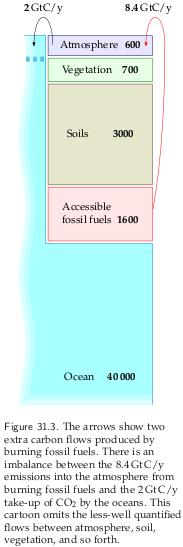 Carbon flows