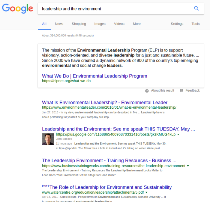 Leadership And The Environment Google search results