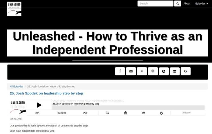 Unleashed - How to Thrive as an Independent Professional, the Joshua Spodek interview