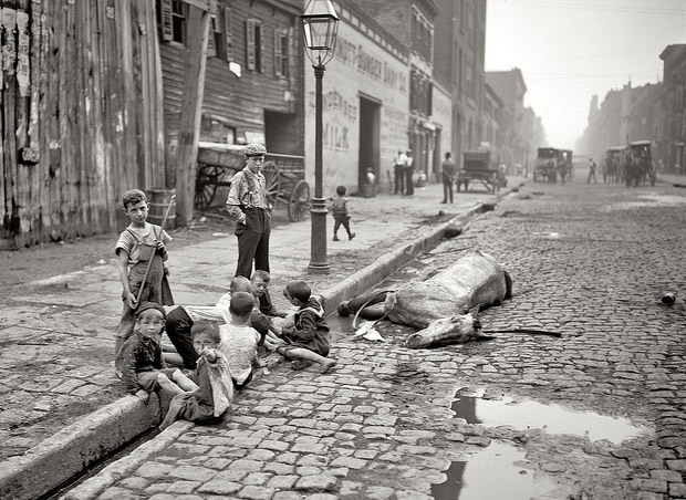 New York City 1895: children play by a dead horse
