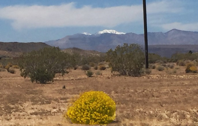 picture by former guest. Snow capped mountains seen towards west