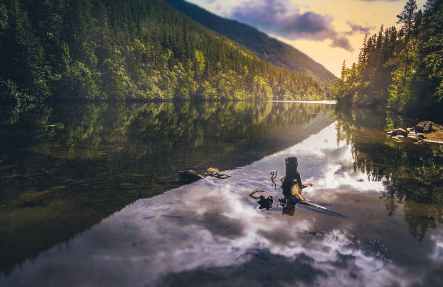 Stunning River Landscape In Alaska