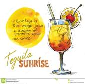 vector-tequila-sunrise-hand-drawn-picture-glass-34983887