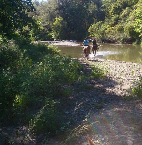 Horse Ranch adventure down river