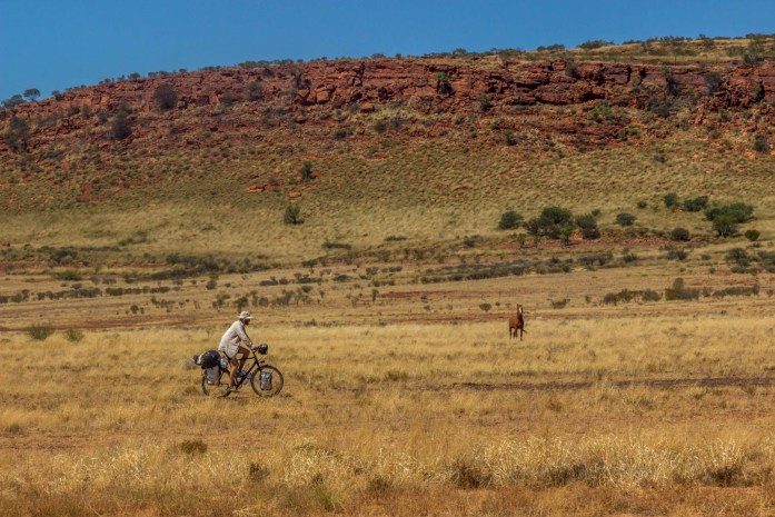 A horse watches a bicycle tourer travel across the landscape in Outback Australia