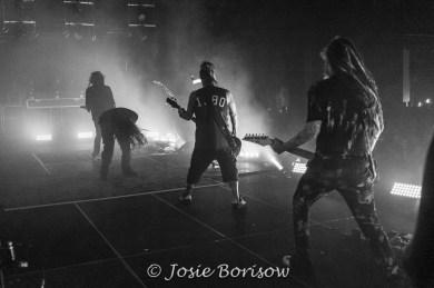 Photo by Josie Borisow