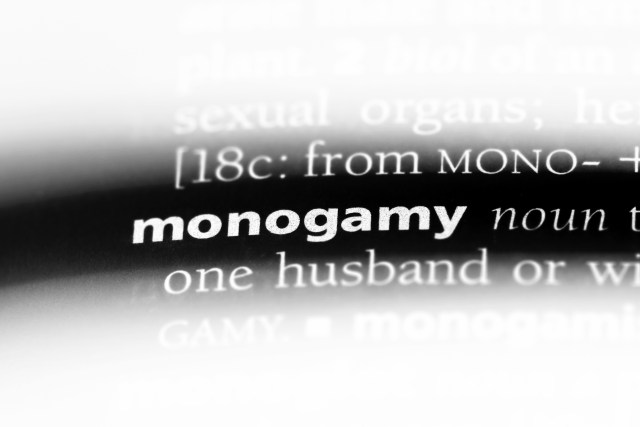 monogamous, relationship, relationships, monogamous relationship