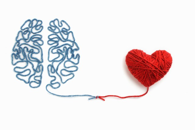 sapiosexual, heart brain