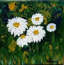 Daisies, 20x20 cm