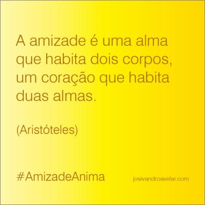 #AmizadeAnima 8