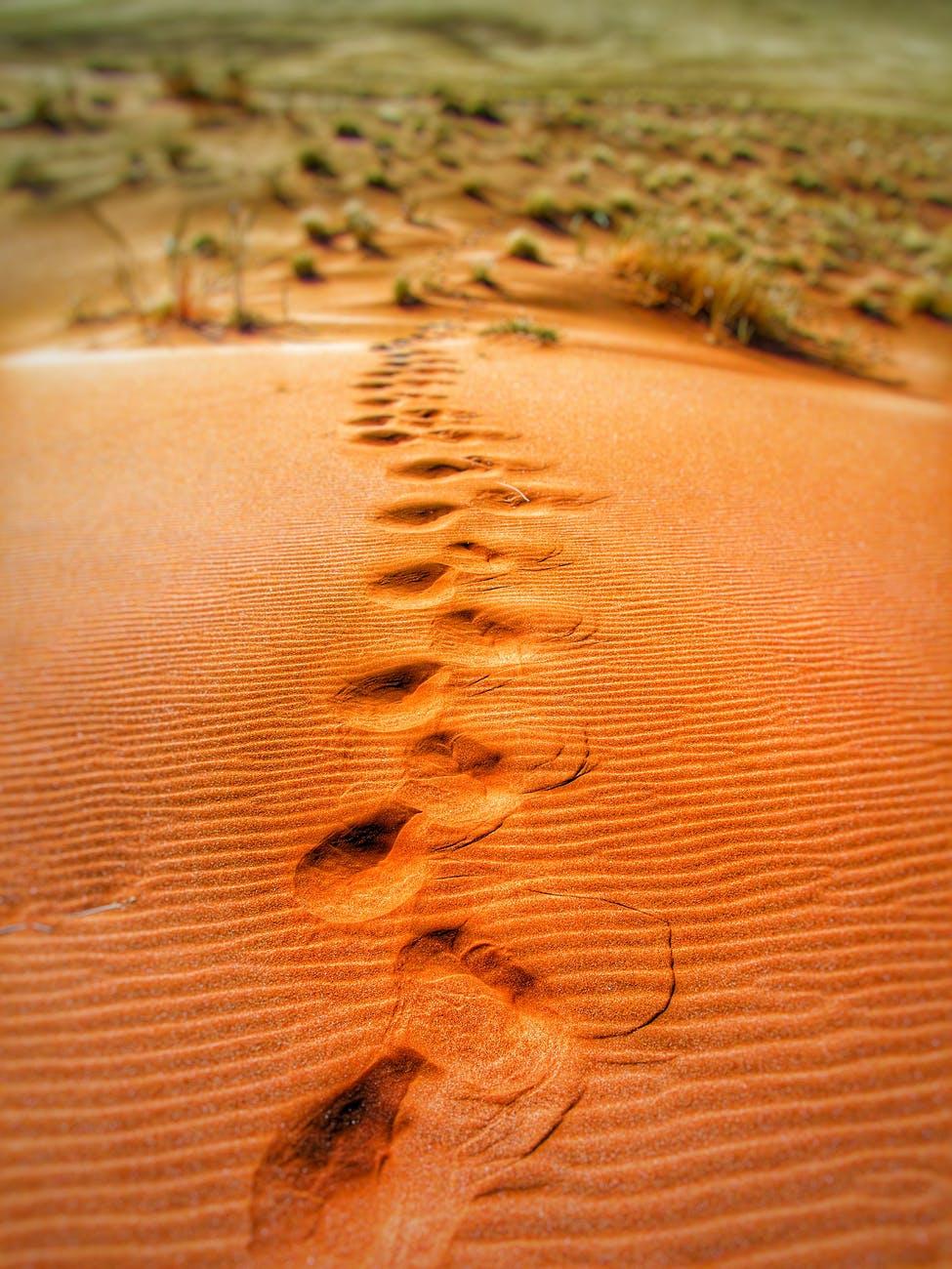 Passos, dunas, dunas de areia. Para cada passo que puder dar, saí por aí.