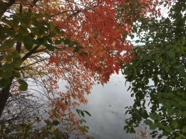 By Lake Harriet