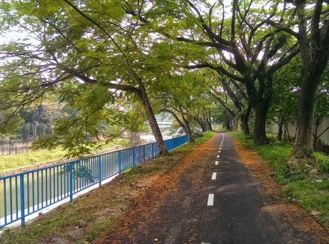 Bike path alongside the river