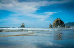 A lifetime of learning on the Oregon coast