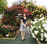 薔薇と戯れて