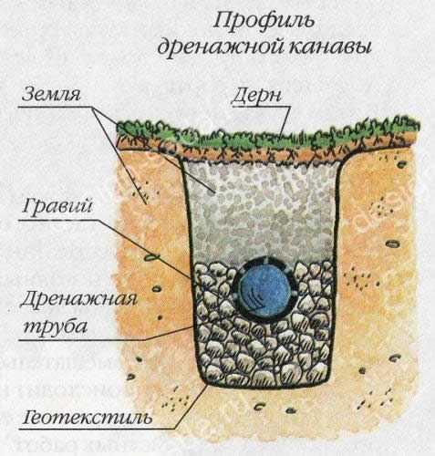 Как отвести воду с участка – Дренаж участка своими руками ...