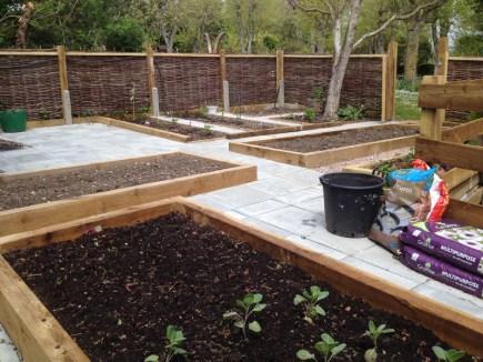 A new vegetable garden designed for easy maintenance