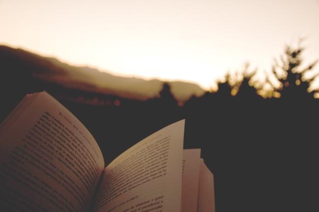 Lectura edificante