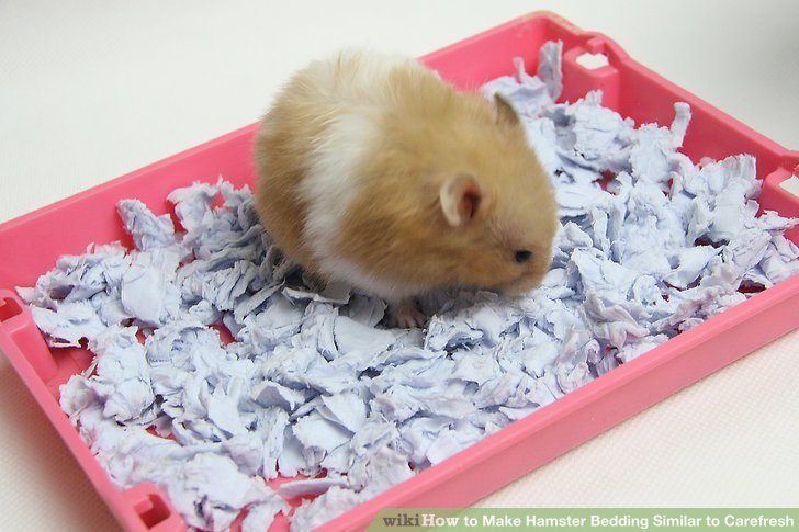 Best How To Make Hamster Bedding Similar To Carefresh 6 Steps With Pictures