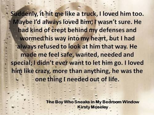 Best Book Review The Boy Who Sneaks In My Bedroom Window With Pictures