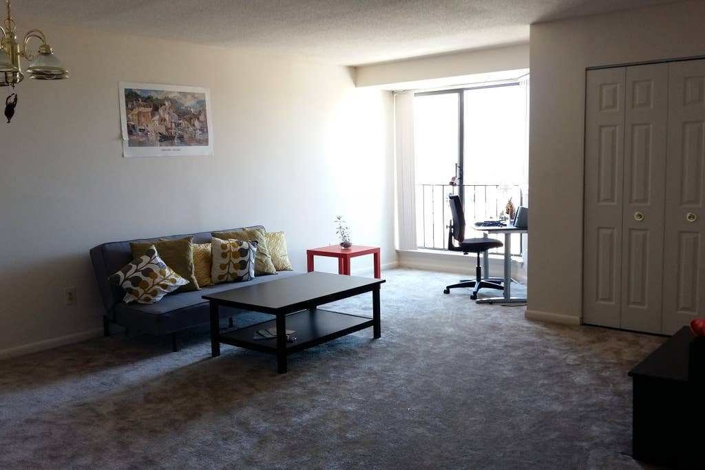 Best Big 1 Bedroom Apt Downtown Dc Apartments For Rent In With Pictures