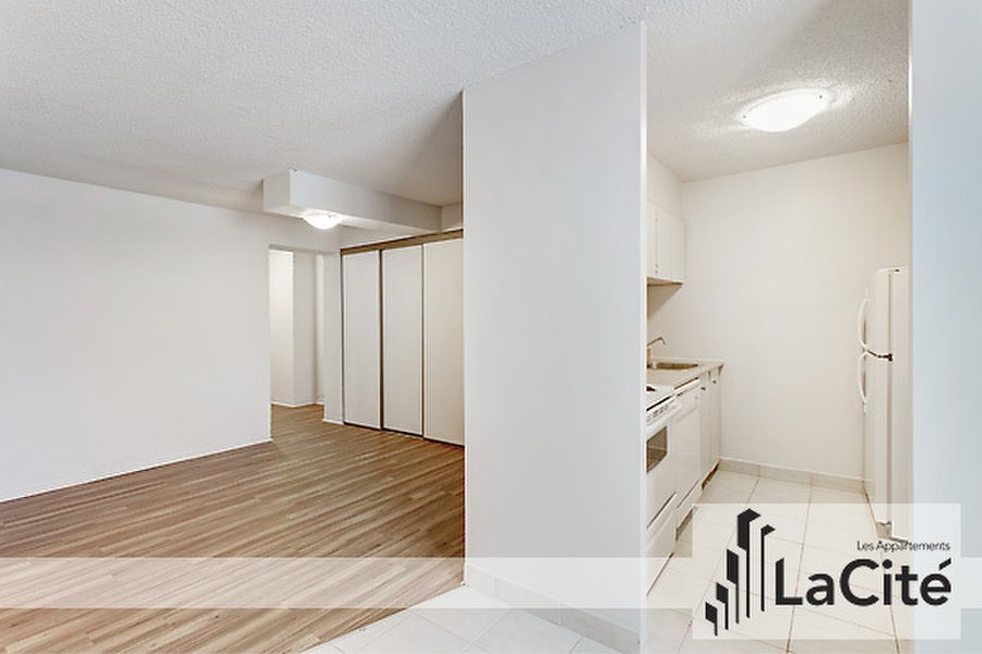 Best 1 Bedroom Apartment For Rent Downtown Montreal For Rent With Pictures