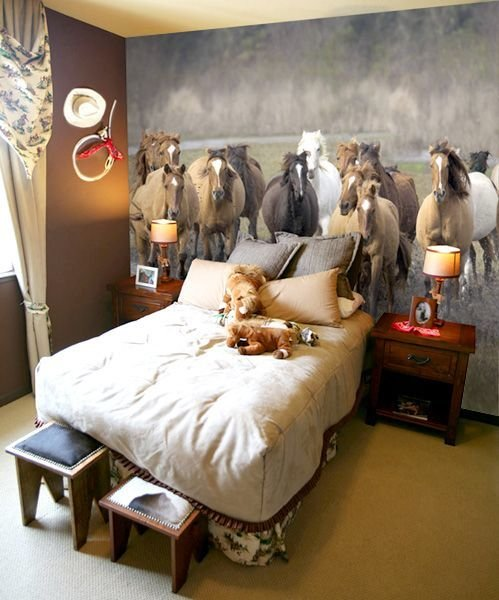Best 25 Horse Themed Bedrooms Ideas On Pinterest Horse With Pictures