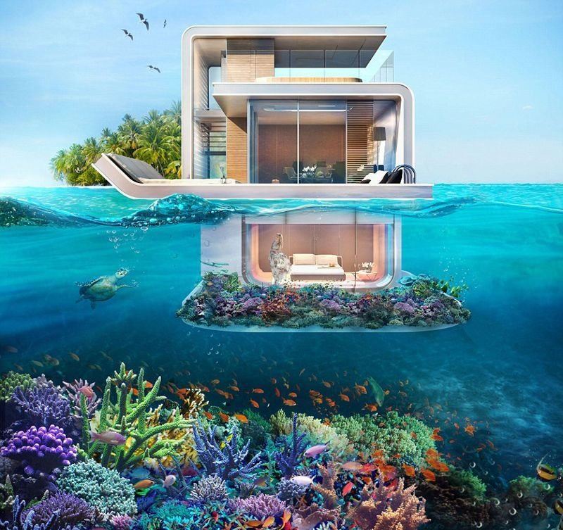 Best The Floating Seahorse Villas With Underwater Bedroom With Pictures