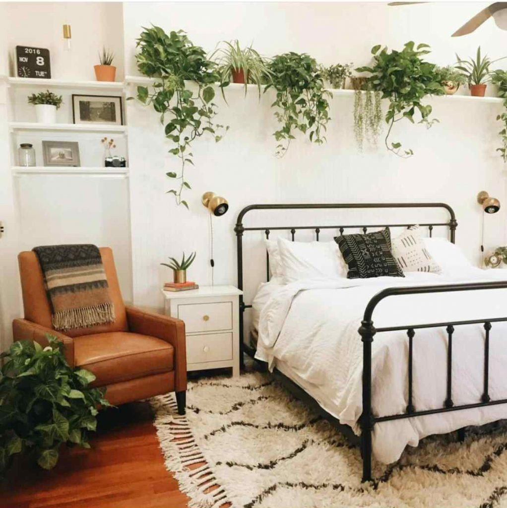 Best 3 Bedroom Plants That Will Help You Sleep Better At With Pictures