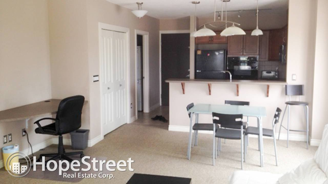 Best Furnished 1 Bedroom Condo By University Of Calgary Hope With Pictures