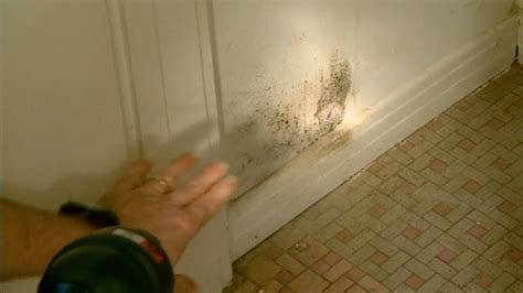 Best Preventing Mould In Bedroom Www Indiepedia Org With Pictures