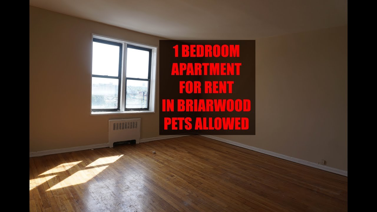 Best 1 Bedroom Apartment With Nice View For Rent In Briarwood With Pictures