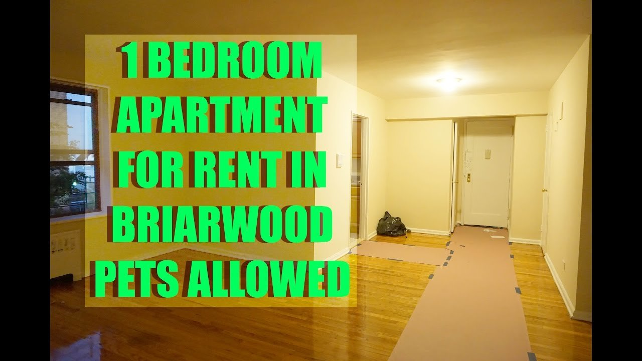 Best Pet Friendly 1 Bedroom Apartment For Rent In Briarwood With Pictures