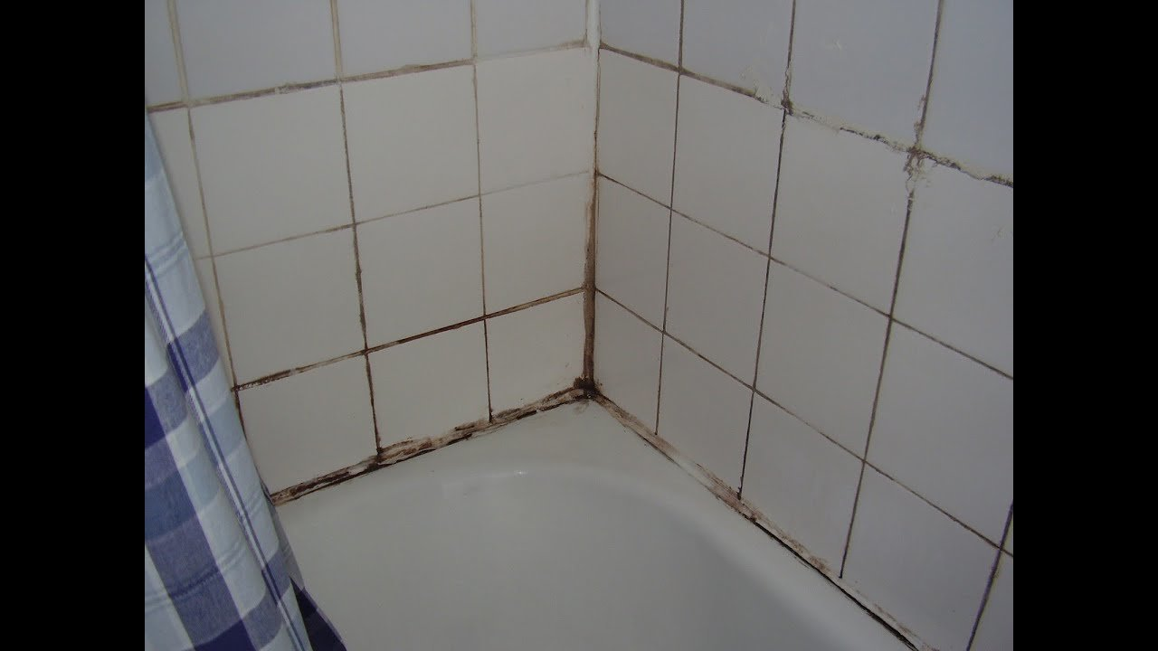 Best How To Cure Damp And Mould In The Bathroom Youtube With Pictures