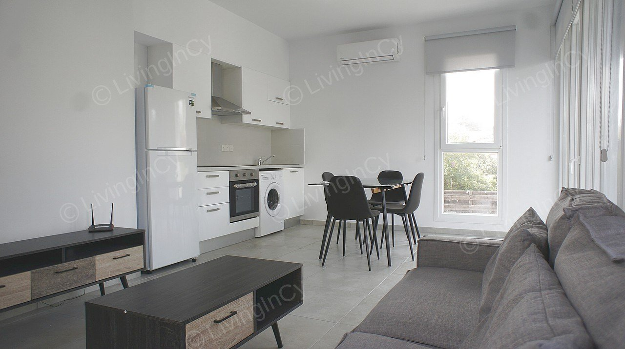 Best 1 Bedroom Apartment For Rent In Nicosia City Center With Pictures