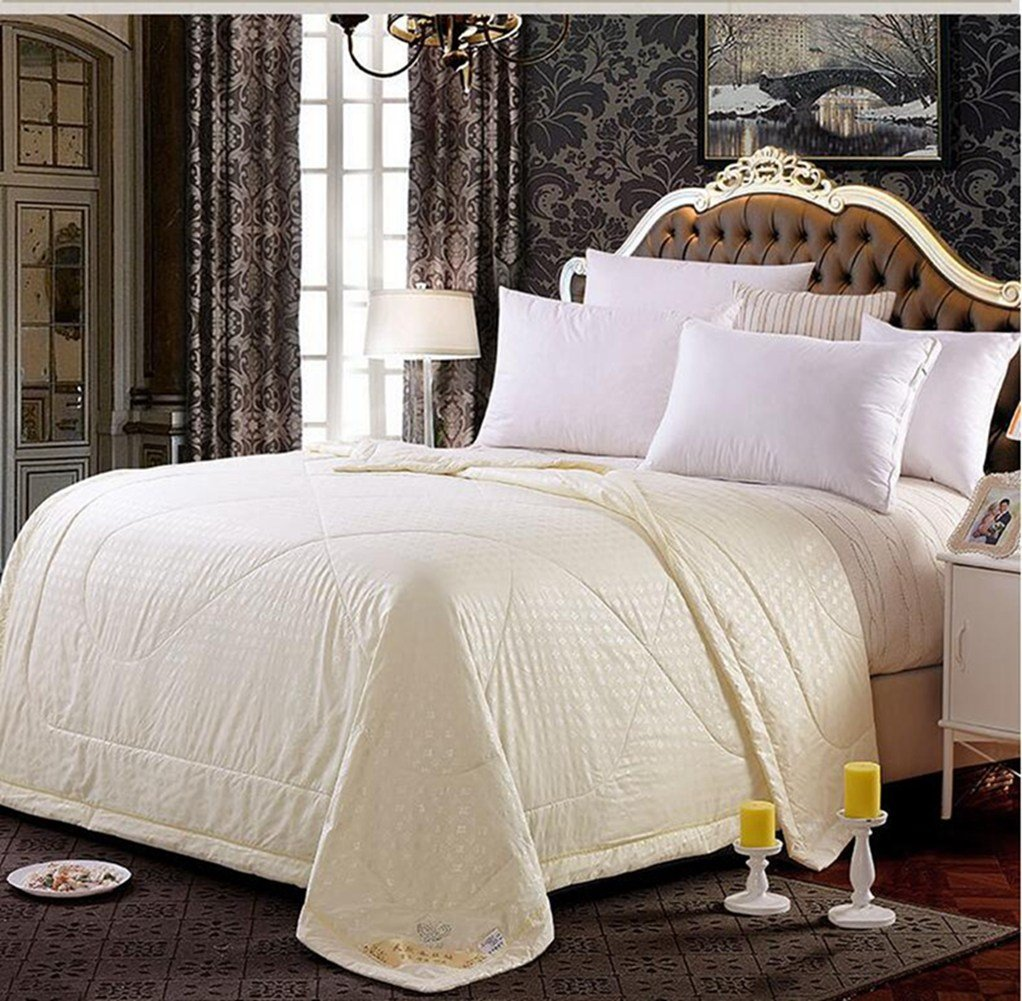Best New Mulberry Silk Filled Comforter Quilt Duvet Coverlet With Pictures