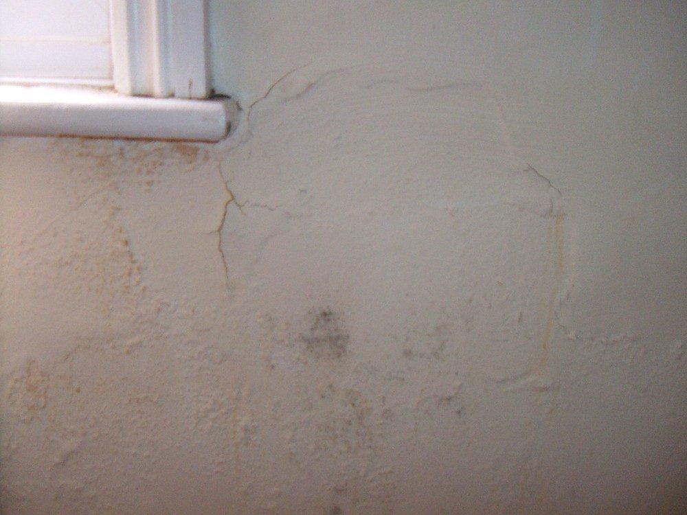 Best Damp On Bedroom Wall And Above And Above Window Damp With Pictures