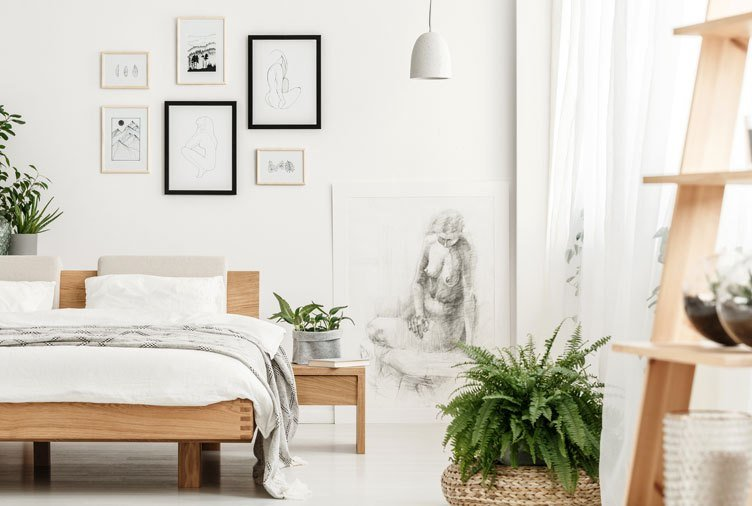 Best The Best Bedroom Plants To Help You Get A Better Sleep With Pictures