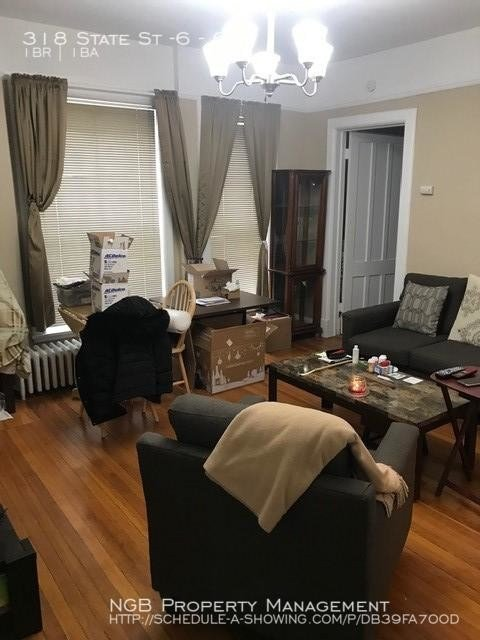 Best 1 Bedroom In Albany Ny 12210 Apartment For Rent In With Pictures