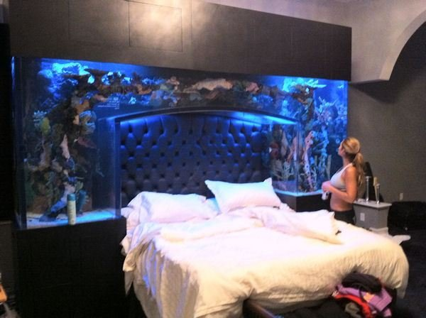 Best Nfl Baller Chad Ochocinco Installs A Fish Tank Headboard In Bedroom Media Anarchist With Pictures